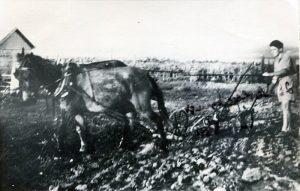 Alfred Auerbach in Israel